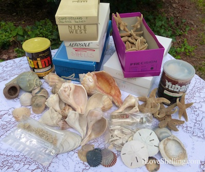 mom shell collection boxes