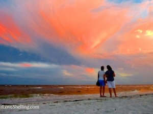 stare at the sanibel sky