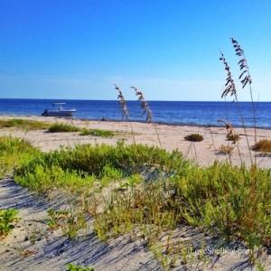 sw florida island beach