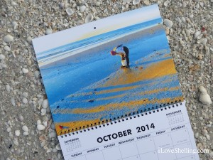 calendar sanibel stoop sunrise shelling