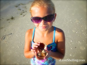 charity with sea shells sanibel