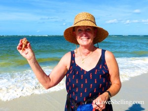 diane lighting whelk cayo costa iLoveShelling cruise