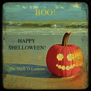 happy shelloween pumpkin
