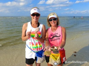 heidi debbie shell sand dollars fort myers beach