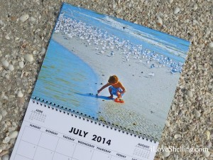 july calendar sanibel stoop boy