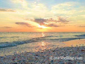 sunset sanibel shell reflection