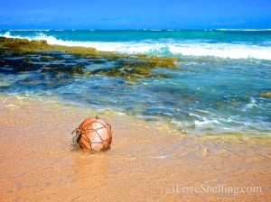 buoy in the bahamas