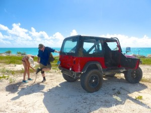 cat island jeep through sand burrs