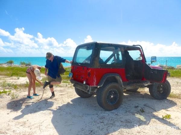 cat island jeep through sand burrs