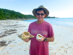 collecting seashells Cat Island Bahamas chank shell helmet