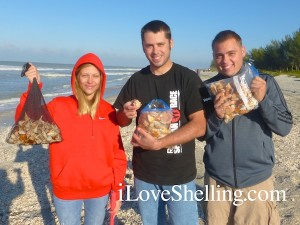 jessica kyle matthew VA find seashells captiva florida