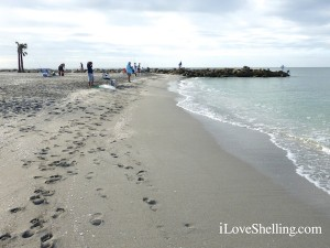 sandy beach captiva blind pass