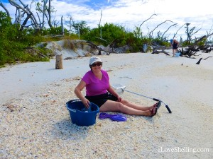 vicky ross collecting shells cayo costa