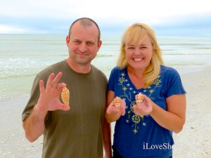 Cheryl Kirk Cleveland finds junonia shell on sanibel