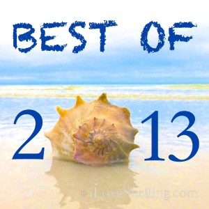 best of iLoveShelling 2013