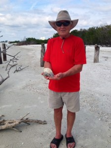 dennis kansas shells fort myers beach florida