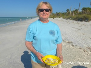 linda iowa shells cayo costa florida