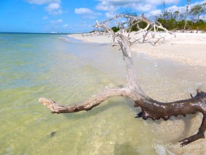 lovers key beach florida