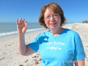 barb with caritas murex i love shelling tee