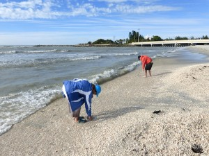 blind pass sanibel looking at jetty rocks at captiva