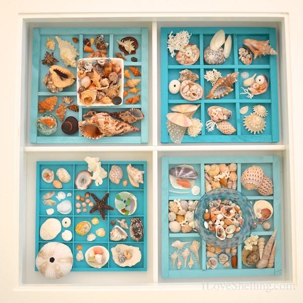 Seashell Display Table Ideas