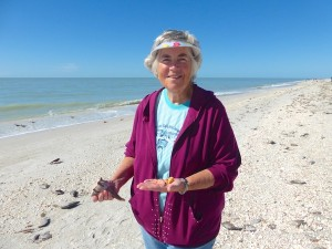 sue lions paw florida cone sanibel