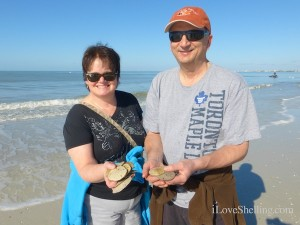 susan vince waterloo canada visit fort myers beach florida shelling