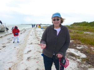 suzanne shelling cayo costa with moon shells