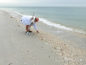 beach combing cayo costa with i Love Shelling