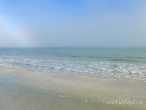 foggy day on sanibel