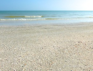 peaceful retreat and shells on the beach of Sanibel Island