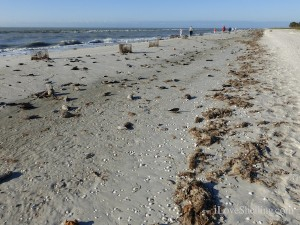 sanibel beach after storm winds