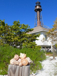 seashells and the sanibel lighthouse