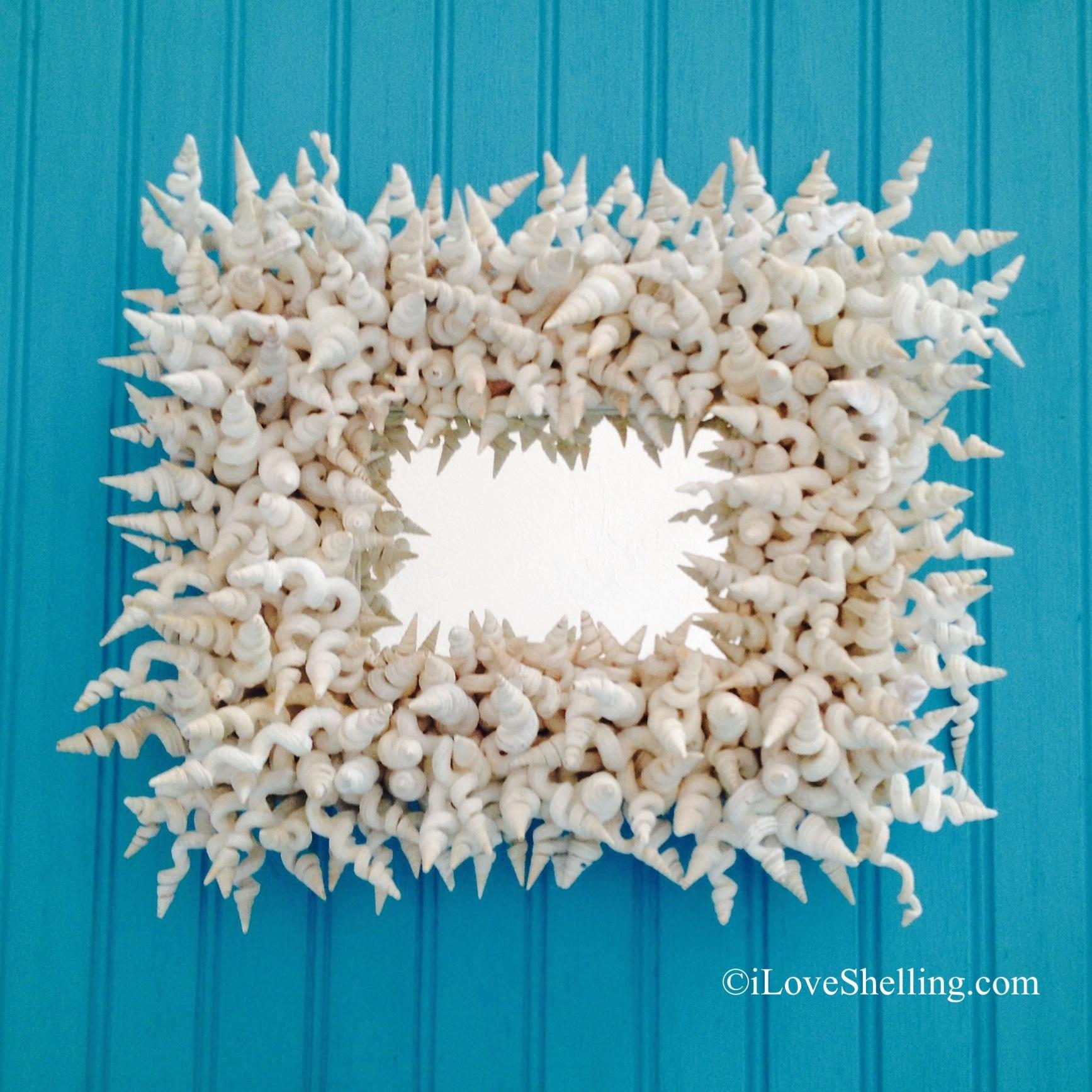 Whimsical World Of Worm Shells