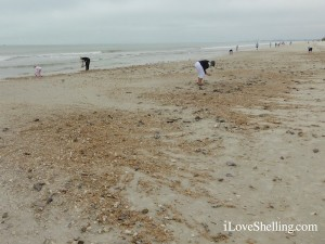 collecting sea shells after a storm