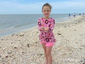 ellie from Wisconsin finds shells in Florida