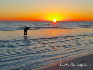 sanibel stoop bowman's beach florida sunset