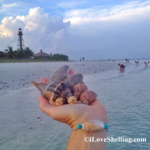 seashell bracelet with shells and lighthouse