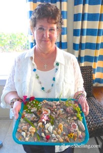 cindy with shell display at iLoveShelling Shellabaloo