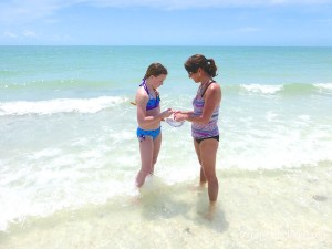 hayley and lori sifting for shells