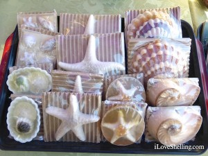 sanibel soap in the shape of seashells