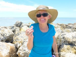 audrey odonnell finds a flat scallop shell on Captiva
