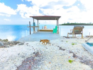 firefly bone fishing dock in the bahamas
