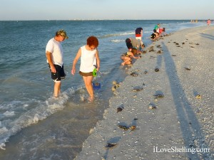shelling the erosion ledges