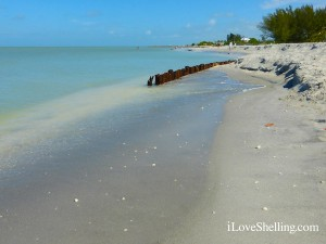 wooden sea wall blind pass sanibel may 2014 (1)