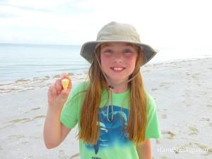 Jordyn found a gold-banded cone Sanibel Island Florida