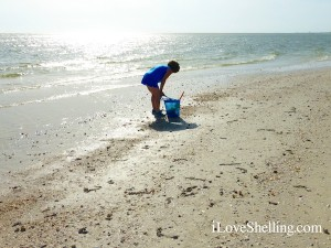 Lisa from Chicago stooping for shells