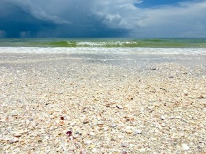 sea shells with clouds and waves on Sanibel Island