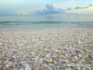 Simply a Sanibel Sky with shells