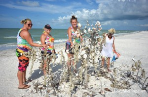 Wishing on a Sanibel shell tree